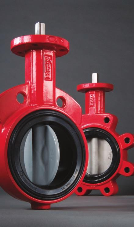 "BUTTERFLY VALVES RESILIENT SEATED SERIES 30/31 Wafer/Lug 2""-"