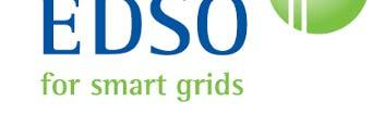 Smart Grids Implementation of the European Electricity i Grid Initiative i i (EEGI) The European Electricity Grid Initiative has been created by the major TSOs and DSOs European Associations (ENTSO-E