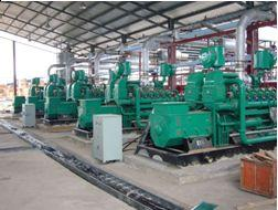 Mill Effluent ponds Number and Genset Type: 2 500GF1-1RZ Electrical Output: 1000kW
