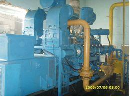 from Wood chips Number and Genset Type: 6 500GF1-RJG Electrical Output: 3000kW
