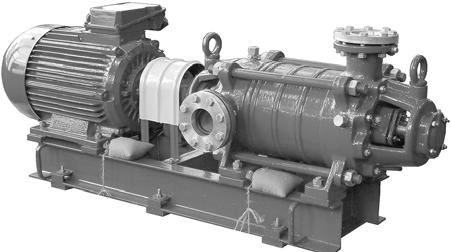 centrifugal multistage pumps of CNSg type and electric pump units on their basis CENTRIFUGAL MULTISTAGE PUMPS OF CNSg TYPE AND ELECTRIC PUMP UNITS ON THEIR BASIS APPLICATION Centrifugal multistage