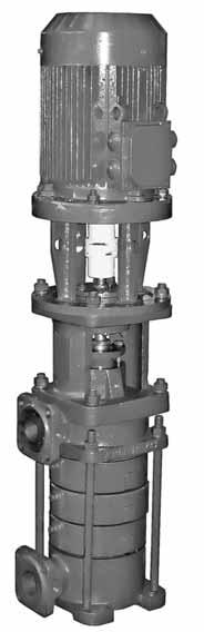 centrifugal multistage sectional pumps of CNSv type and electric pump units on their basis CENTRIFUGAL MULTISTAGE SECTIONAL PUMPS OF CNSv TYPE AND ELECTRIC PUMP UNITS ON THEIR BASIS APPLICATION