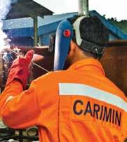 CARIMIN Sdn Bhd Provision Of Professional Technical & Non- Technical Personnel Service Geophysical Services Engineering Consultancy & Technical Support Quality Assurance & Integrated Inspection