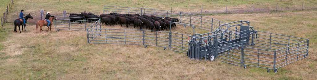 Standard size corral. Unhooked for setup. Start setup of portable s by rolling them out.