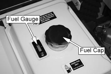3. Unscrew fuel cap. Check that the strainer located in the mouth of the fuel tank, is free from contaminants. 4.