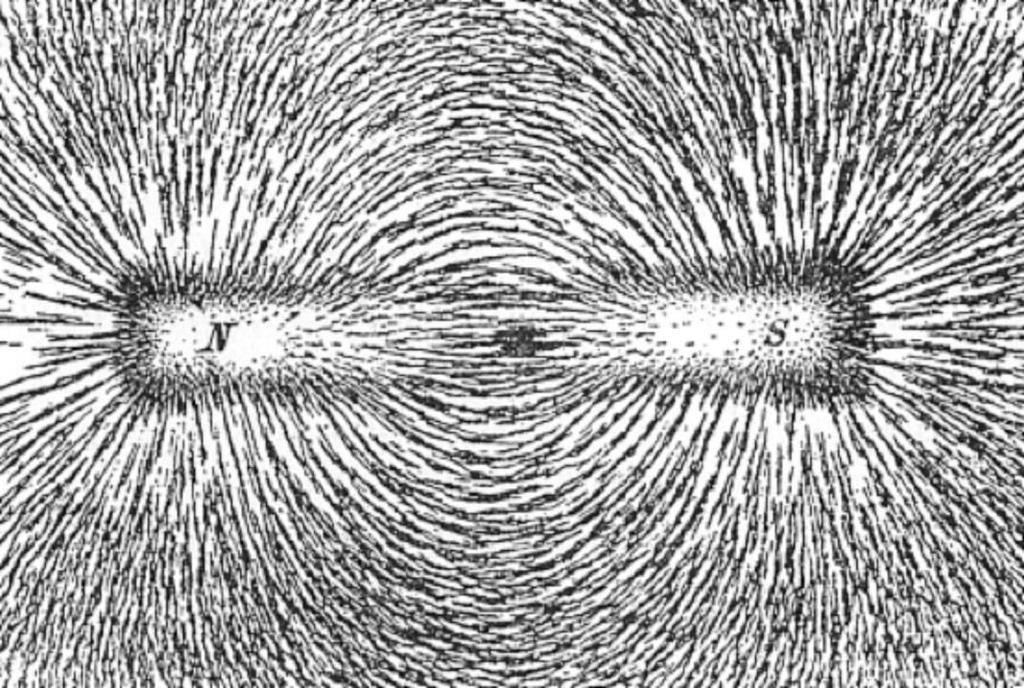 Exerts magnetic force Surrounds a
