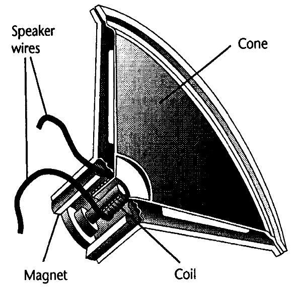 Speaker electrical energy mechanical energy wire coil moves back & forth as its magnetic