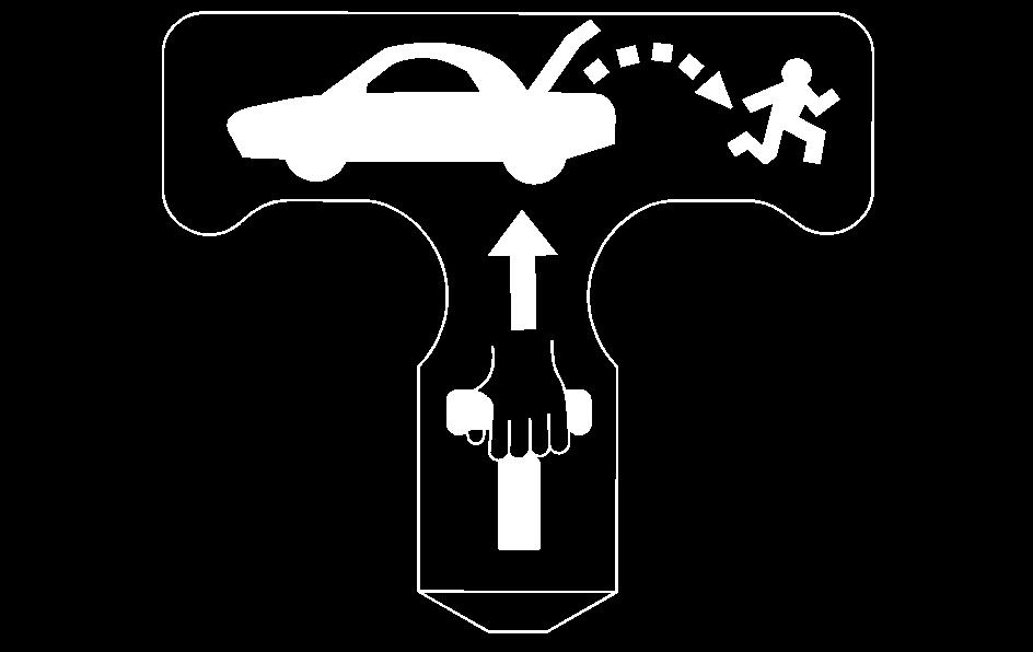 Notice: Using the emergency trunk release handle as a tie-down or anchor point when securing items in the trunk may damage it.