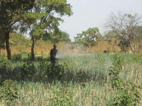 Samake Malian Farmer I now have the cash to buy malaria