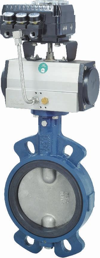 MAXFLOW Butterfly Valve with Pneumatic Actuator and Positioner Maxflow Butterfly
