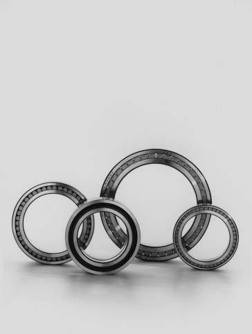 FAG Cylindrical Roller earings full complement FAG Cylindrical Roller earings full complement Standards asic designs Tolerances earing clearance Full complement cylindrical roller bearings are
