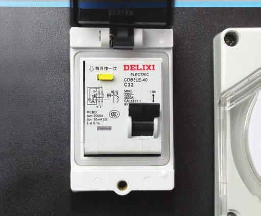 MAINTENANCE RCD SAFETY SWITCH TESTING (IF EQUIPPED) 1.