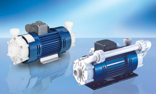 NON-SELF-PRIMING RM TYPE 2D This pump is equipped with a nonventilated (0.25 kw) motor with two shaft ends. A pump head of size 8/60 is mounted to each side of the motor.