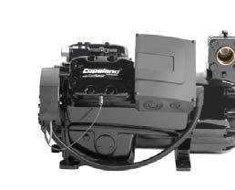The Discus range: It is broadly recognized as the most efficient compressor whatever the running condition.