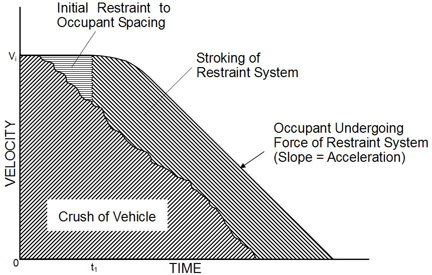 ANALYSIS OF HEAD VELOCITY The velocity histories of dummies are helpful to understand the initial behavior of occupants and the interaction between the vehicle and the occupant during crash.