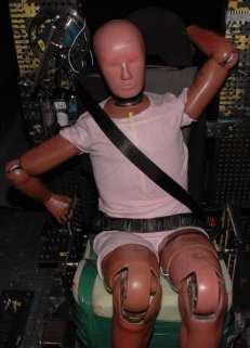 place post crash. The dummy was effectively restrained in the vehicle seat by the seatbelt.