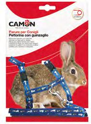 conigli Basic «Basic» Rabbit
