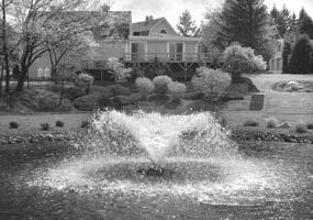 These systems, known for their ability to keep water clean, are unlike other fountain systems.